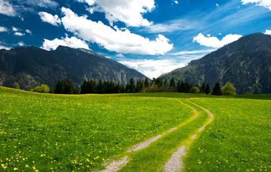 Горы и зеленое поле