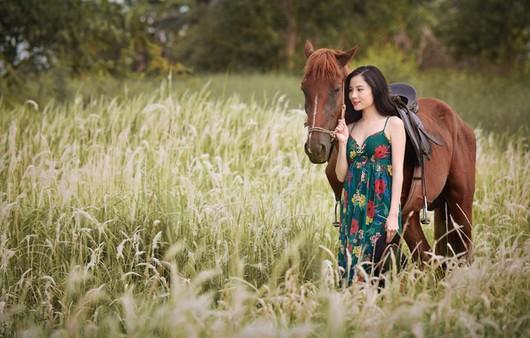 Девушка с лошадью в поле