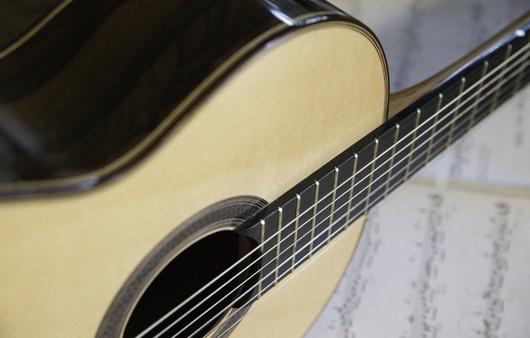 Гитарные струны в макросъемке