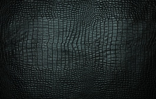 Фотообои Текстура кожи крокодила