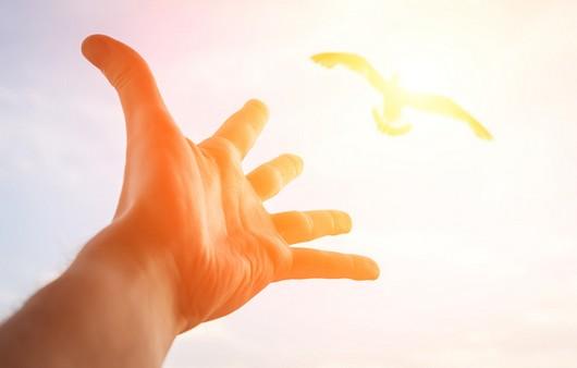 Рука протянутая к небу