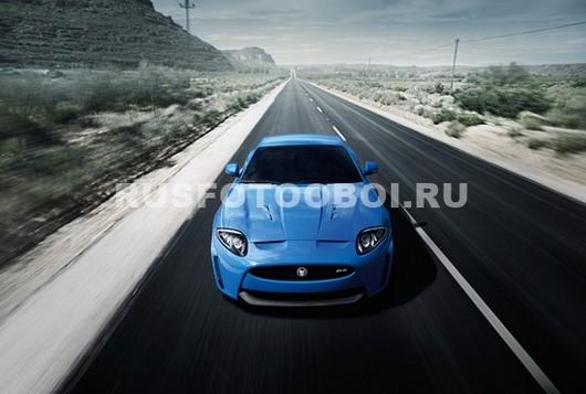 Фотообои Голубой ягуар