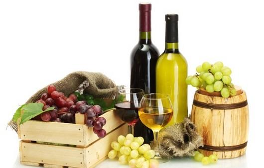 Фотообои Вино и виноградные лозы
