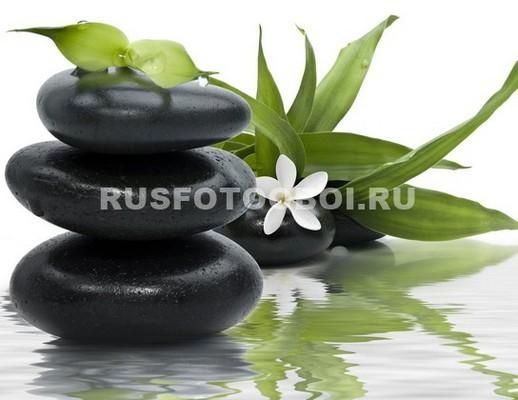 Фотообои Черные камни