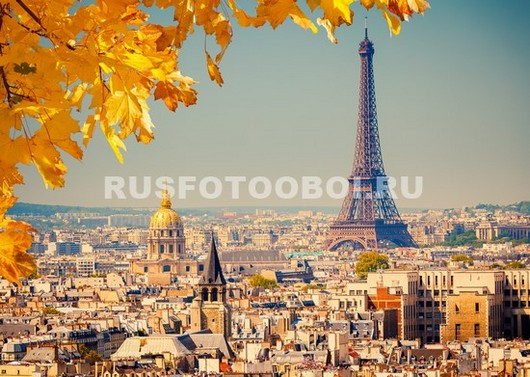 Желтые листья с видом на Париж