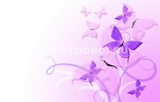 Сиреневые бабочки