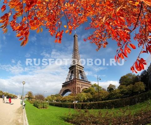Эйфелева башня осенние листья