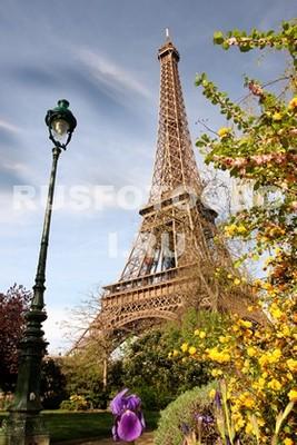 Красивый вид на Эйфелеву башню
