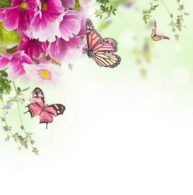 Бабочки под цветами