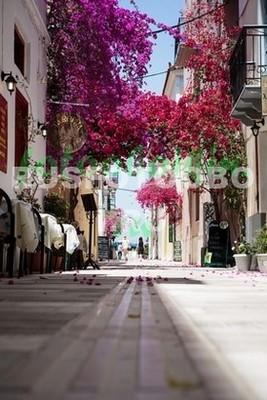 Улочка с розовыми цветами