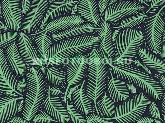 Зеленые перья
