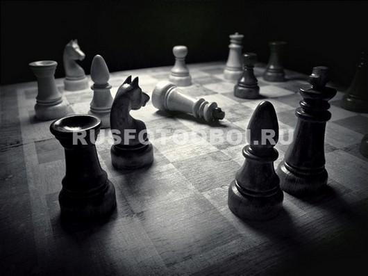 Партия шахмот