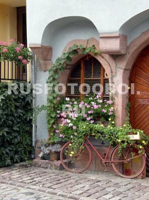 Окно с цветами