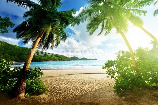 Райский пейзаж