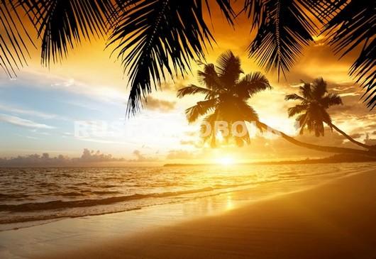 Фотообои Закат на золотом пляже