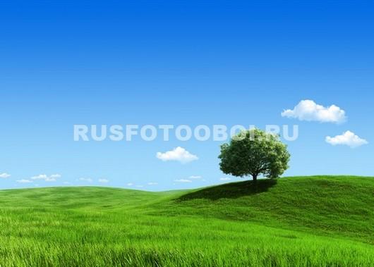 Фотообои Зеленое поле 3Д