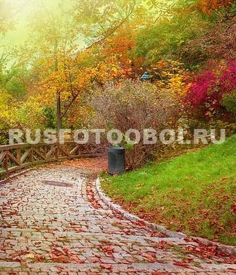 Дорога в листьях
