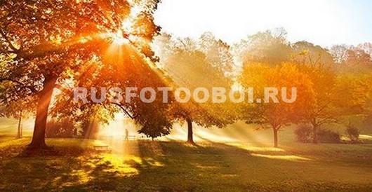 Солнце осенью