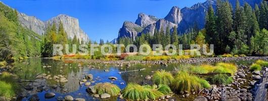 Горы в лесу