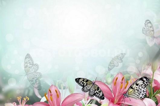 Бабочки на лилиях