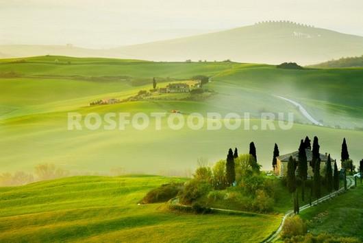 Фотообои Зеленые поля