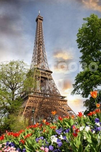 Эйфелева башня с тюльпанами