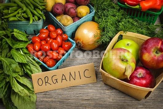 Фотообои Свежие овощи
