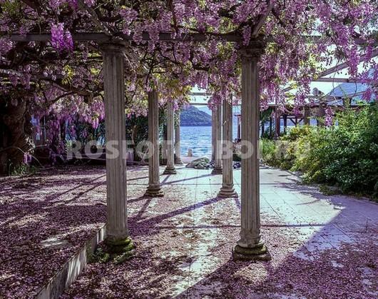 Колонны с цветами