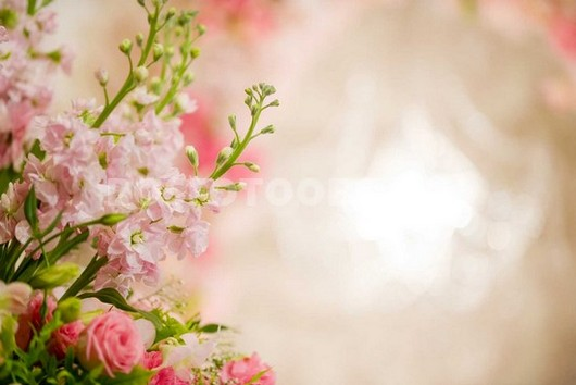 Фотообои Нежный букет цветов