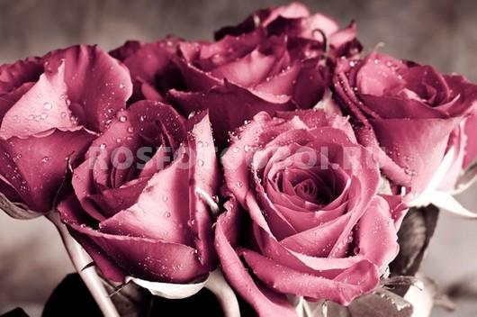 Розовые розы в букете