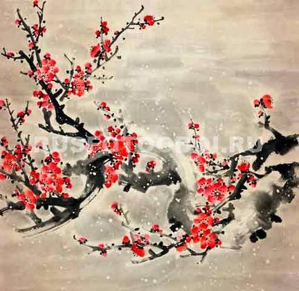 Ветка красной сакуры