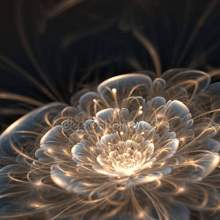 Цветок с золотыми лучами