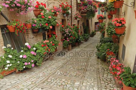 Старые мощеные улицы с цветами