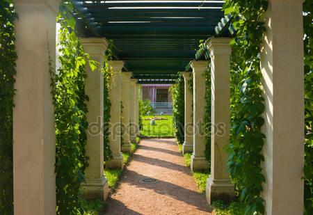 Тенистые колоннада