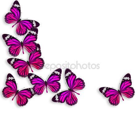 Второстепенная бабочка