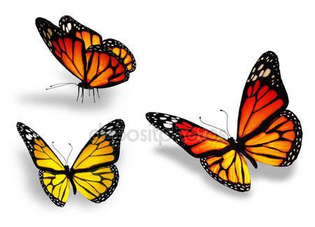 Три желтых бабочки