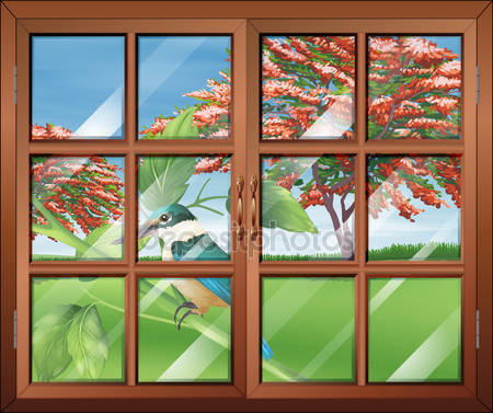 Закрытое окно с видом птиц за пределами
