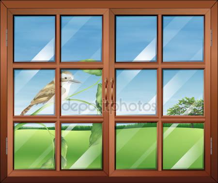 Закрытое окно с птицей за пределами