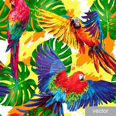 Модель тропических попугаев