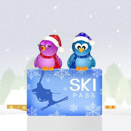 Птицы с ски-пассов