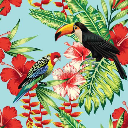 Тропических птицы