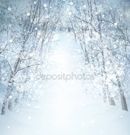 Зимний пейзаж страны чудес