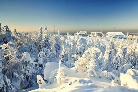 Сказочный зимний пейзаж с снегом