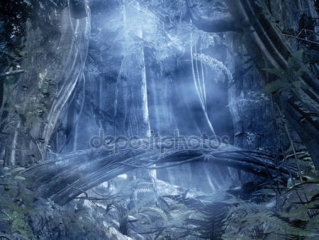 Мистик лес с туманом