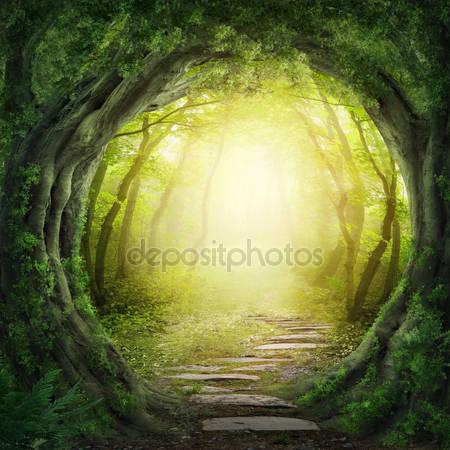 Магия темный лес