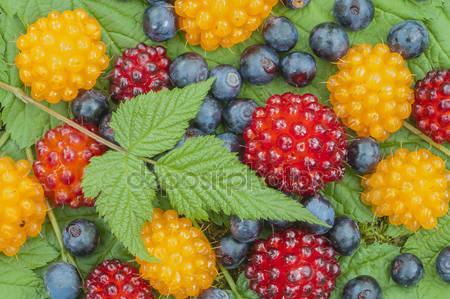 Лесные ягоды с аляски
