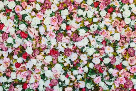 Ковер из цветов
