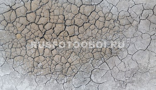 Потрескавшаяся земля