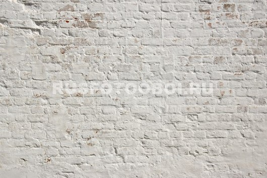 Фотообои Белые кирпичики