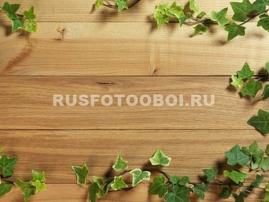 Плющ на деревянной доске